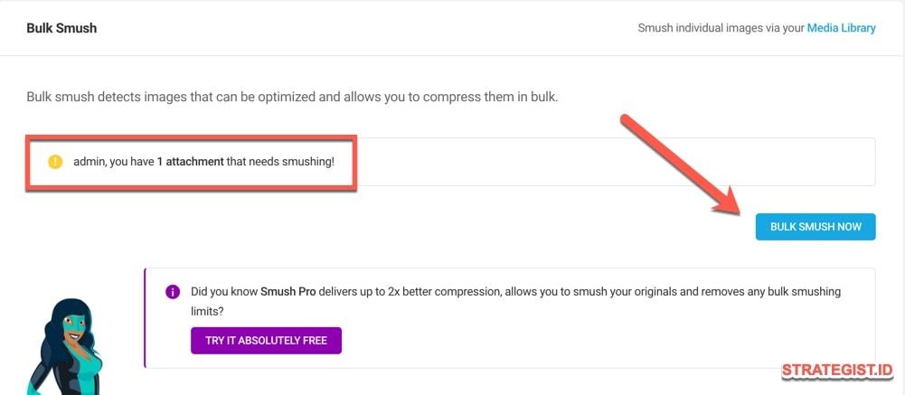 Cara Menggunakan Smush di Blog (Tutorial Instal dan Setting) 8