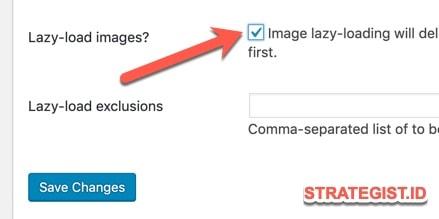 image lazy load autoptimize