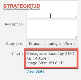 Cara Menggunakan Smush di Blog (Tutorial Instal dan Setting) 10