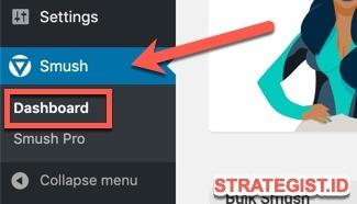 Cara Menggunakan Smush di Blog (Tutorial Instal dan Setting) 4